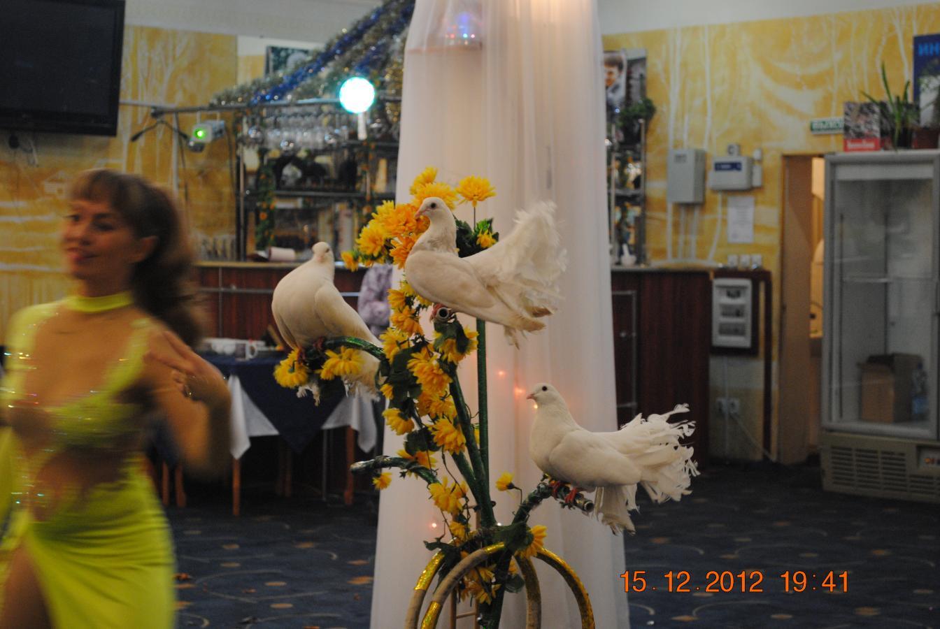 Конкурс голубка на свадьбе видео